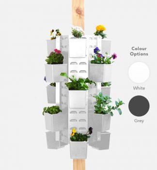 Vertical Garden Wall Perth